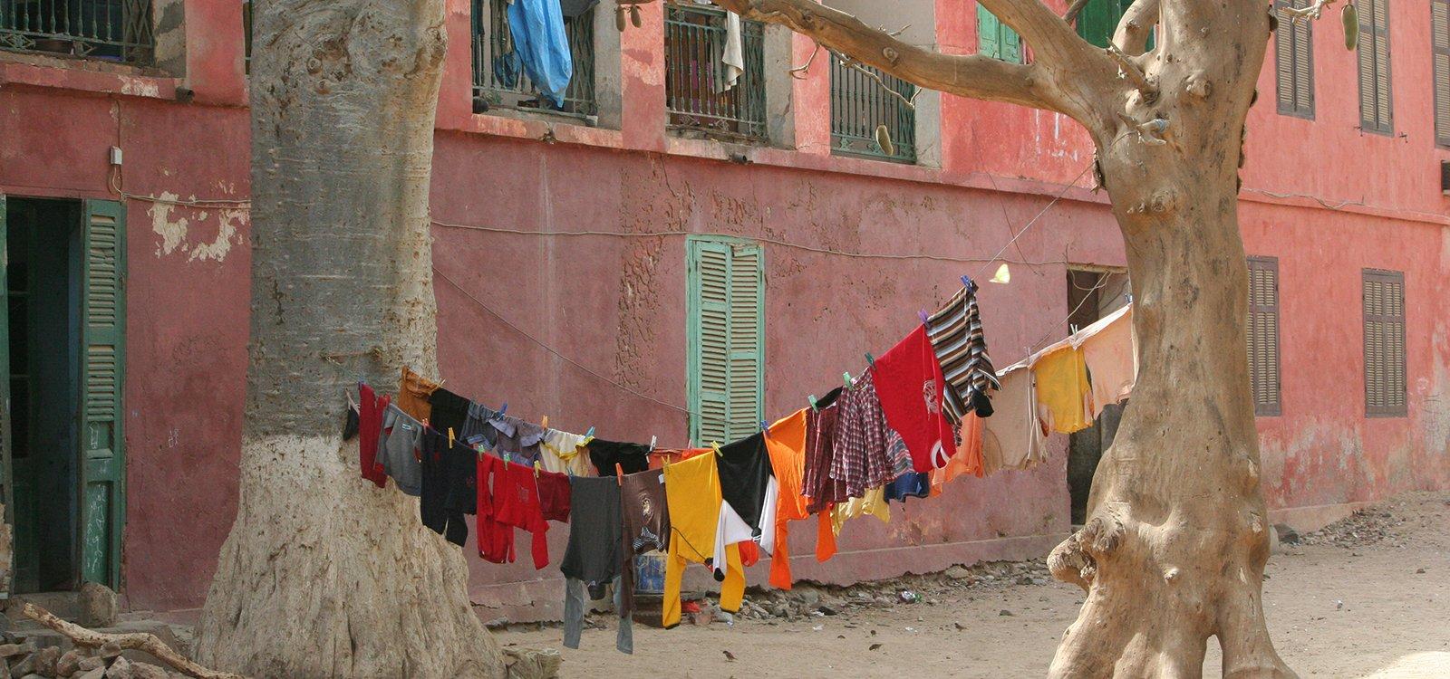 viaggi di conoscenza renken isola di gorée