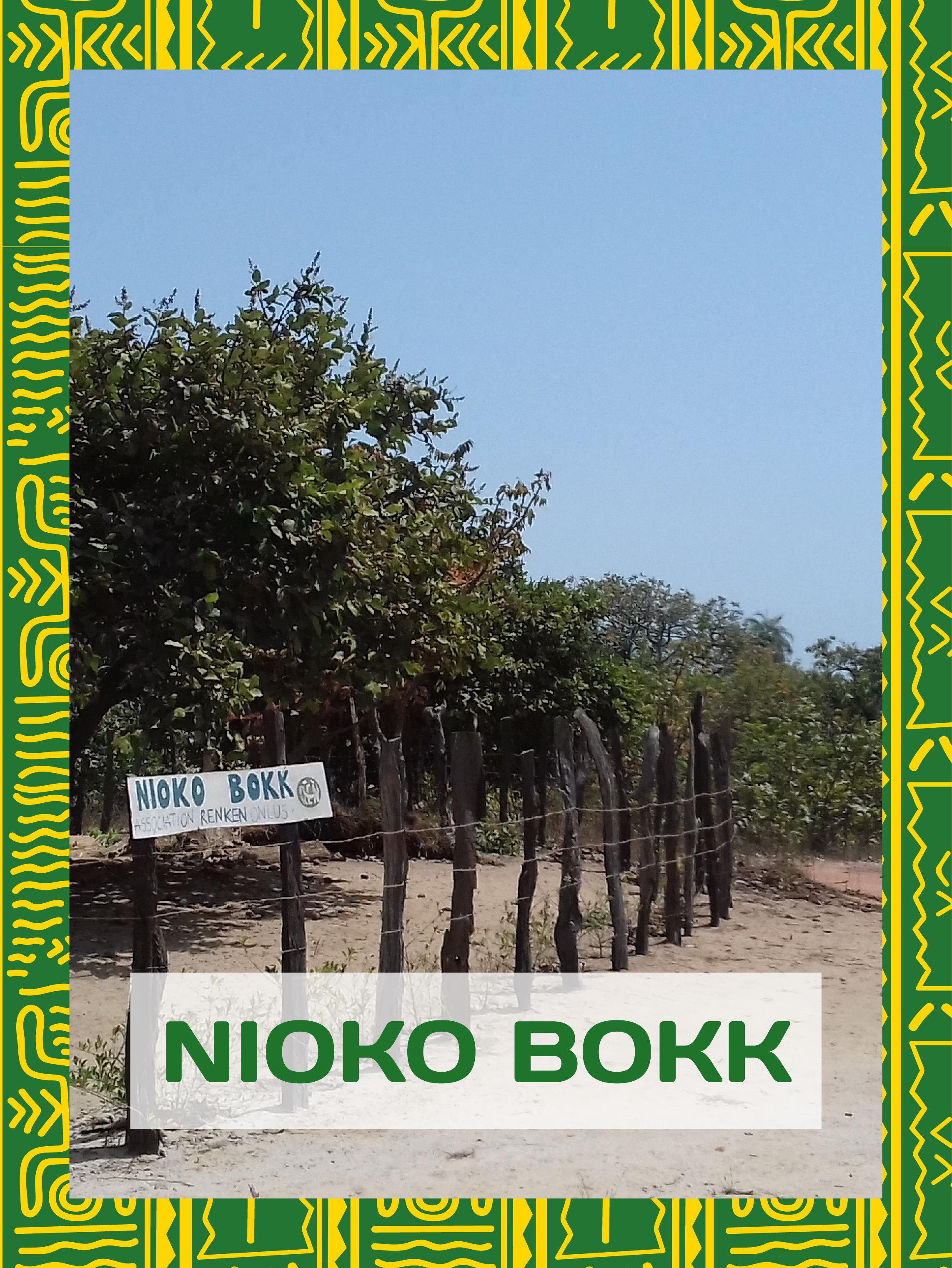 renken onlus mosaico homepage nioko bokk